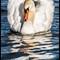 2014-006 Swan 1200