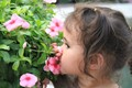 Smelling Beautiful Flowers.