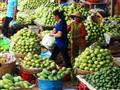 Mango season...