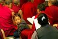 Namgyal monastery, McLeod Ganj, Dharamsala, India.