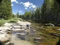 Tuolumne R. Yosemite NP