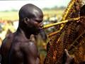A competitor at Fish Festival, Sokoto, Nigeria