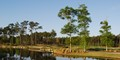 Man at Golf Course in South Carolina