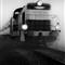 polish train