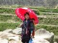 Umbrella, mother and child