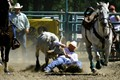 Rodeo bull dog event