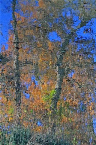 Monet' Autumn
