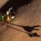 Shadow_Plant_Sand_VOGUT_2XS_050814_3_2_1200px_reduced