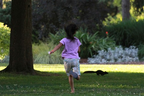 Little girl and the Squirrel 2