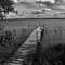 Leech Lake, MN (film):