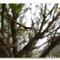 liqua_reloaded_by_weraqs-d328f42