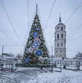 Christmas Tree, Vilnius