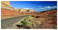 Road In Red Desert