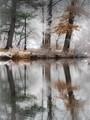 Snow Dusting in the Park_C110006 v2
