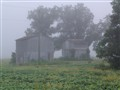 Foggy Farm Barns