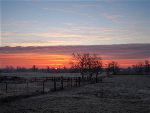Frosty Morning Sunrise