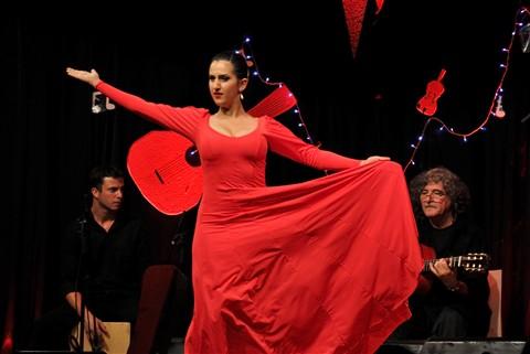 Flamenco_5