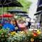 Street Cafe - Quebec City