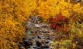 Elko in the Fall