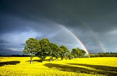 kells rainbow 2048