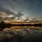 Lilydale Lake-9
