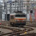 Geneva siding