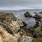 Cannery Point, Point Lobos