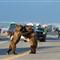 Alaska Traffic Jam