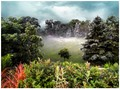 Bellwoods Park-Toronto