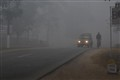 Fog at Road to Kaziranga, Assam