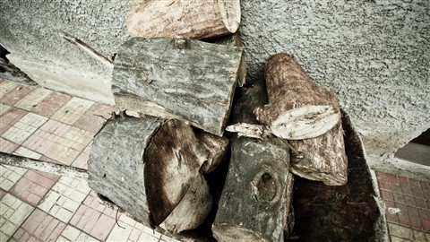 Wood HDR