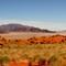 Namib Desert Scene