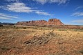 From the road to the Needles District of Canyonlands National Park in Utah.