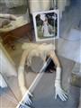 Bride mannequin broken