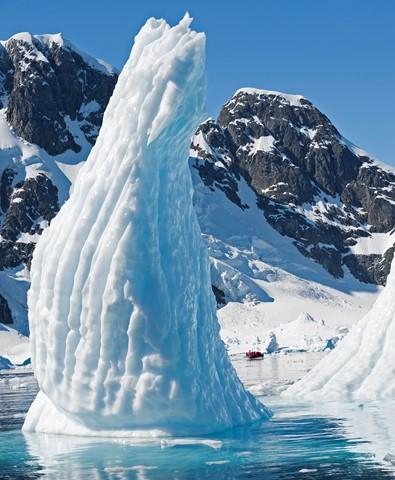Iceberg Zodiac crop 3_0391