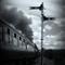 Train BW2