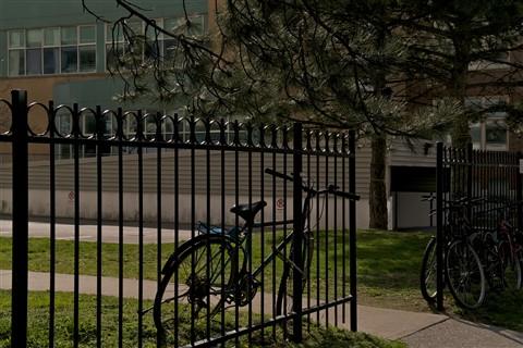 Bikes at School