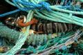 fishermen's gear