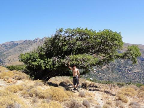 Paleochora - Crete