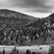 Raven Valley, Norway 2014