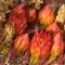 UCR_Bot_Gardens_075_web