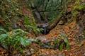 Sierra Madre Trail-0717