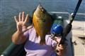 Fish #5