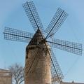 Palma Mallorca windmill