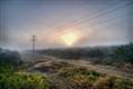 South Texas Fog