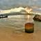 Rasta beach (1280x804)