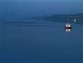 blue misty morning  E1