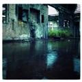 Wet & Forgotten