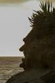 Abe's Profile- Laguna Beach-8939