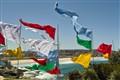 Flag Flying at Bondi.